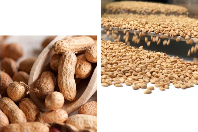 cacahuete a granel