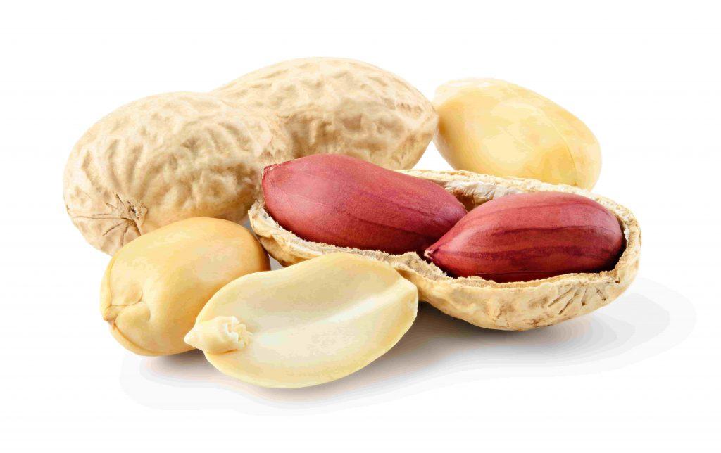peanut guide