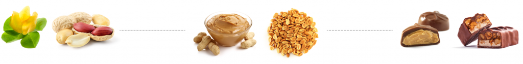peanut forms